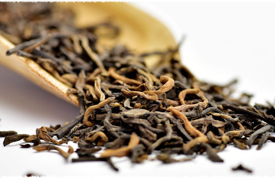 loose leaf puerh
