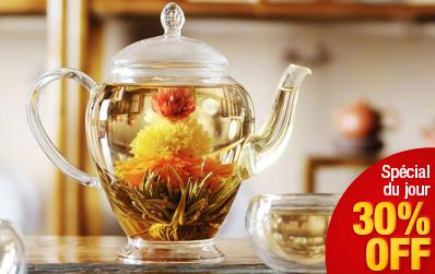 Théière en verre Fleur de ThéCalin – 450 ml