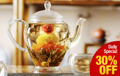 Clear Glass Teapot for Flowering Tea 450 ml / 15.2 oz