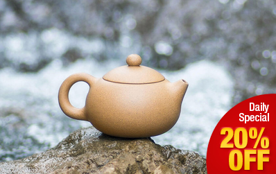 Xi Shi Yixing Purple Clay (Zi Sha) Teapot