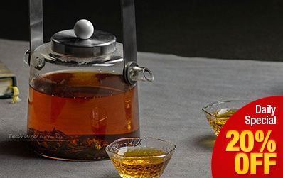 European Design Glass Teapot 900ml / 30.7 oz