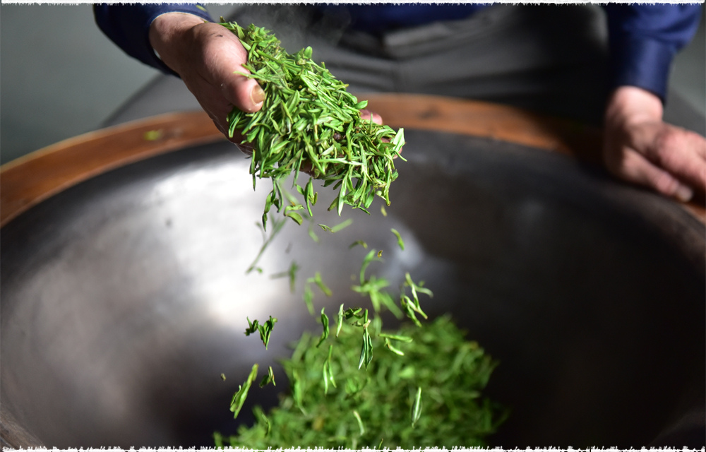 ShaQing Green Tea