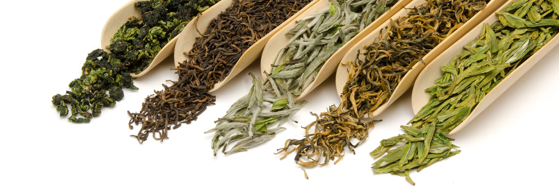 Tea Samplers Packs