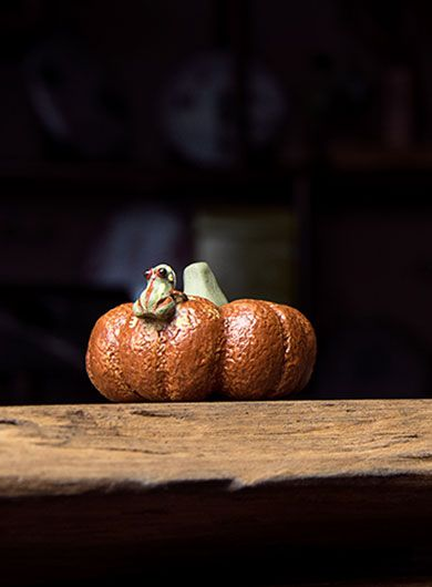 Squirting Frog Pumpkin Yixing Zisha Tea Pet