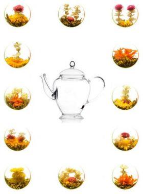 Glass Teapot 450 ml + 12 Blooming / Flowering Tea