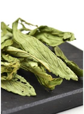 Dried Stevia Leaves Herbal Tea