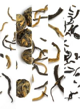 5 Featured Black Teas Assortment Samples