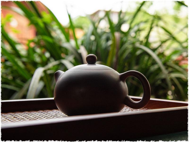 xishi teapot
